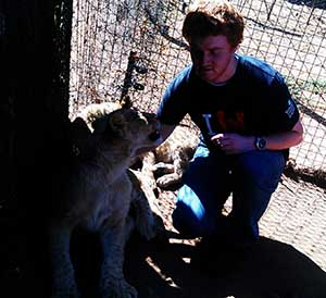 Kirbys Marketing - About Me - Playing With Some Lion Cubs