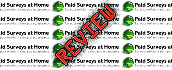 good paying surveys paid survey for beginner 7028